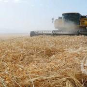 پیاده سازی موفق نرم افزار آرین سیستم در شرکت سهامی زراعی گلپایگان | آرین سیستم